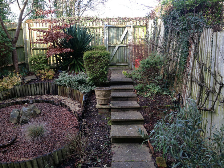 A tired garden in need of a complete design and build